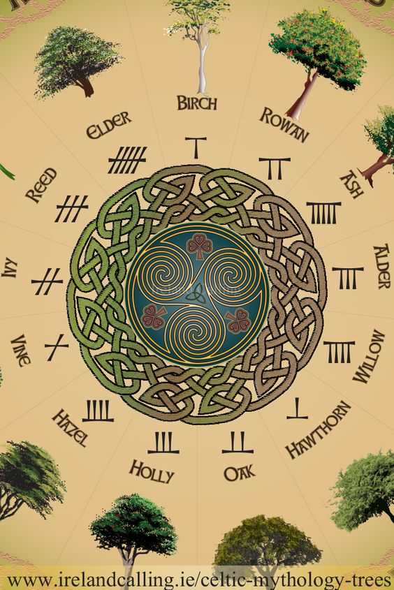 Trees in Celtic Mythology: Trees were hugely significant to the ancient Celts. They believed different kinds of trees served different mystical purposes that helped them through their lives.