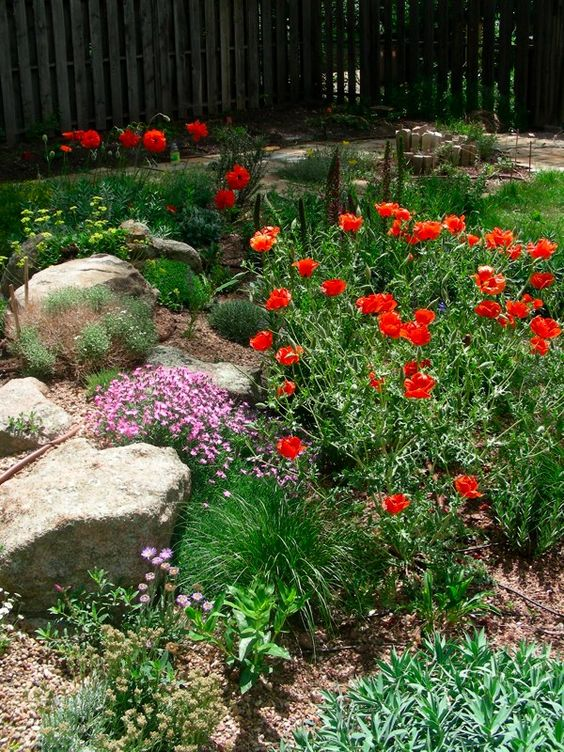 Xeriscape is also called a water wise garden because for Garden design xeriscape