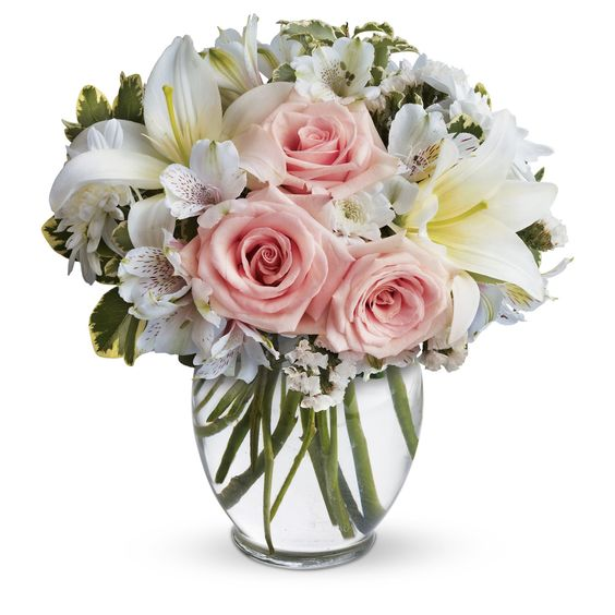Flower delivery silver spring md stock flower images pinterest flower delivery silver spring md mightylinksfo