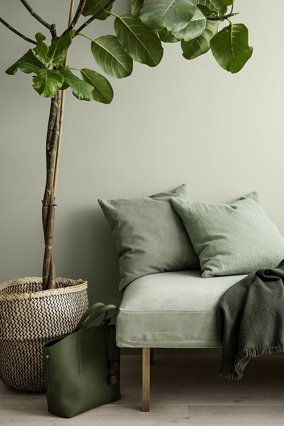 鉢カバー カゴ インテリア コーディネート例 観葉植物