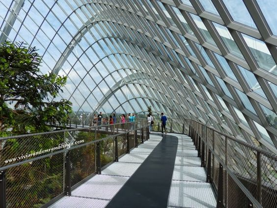 Cloud Forest Dome, Gardens by the Bay