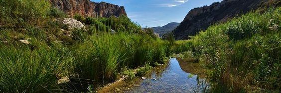 Le Rio Aguas est un fleuve d'Andalousie qui est menacé de disparition par l'agriculture intensive. Un phénomène de désertification proche et inquiétant.