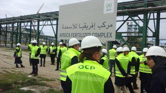 Ocp Recrute Des Ingenieurs Agronomes Juniors Seniors Experts Sur Plusieurs Villes Du Maroc Dreamjob Ma Candidature Spontanee Ingenieur Agronome Ingenieur Du Son