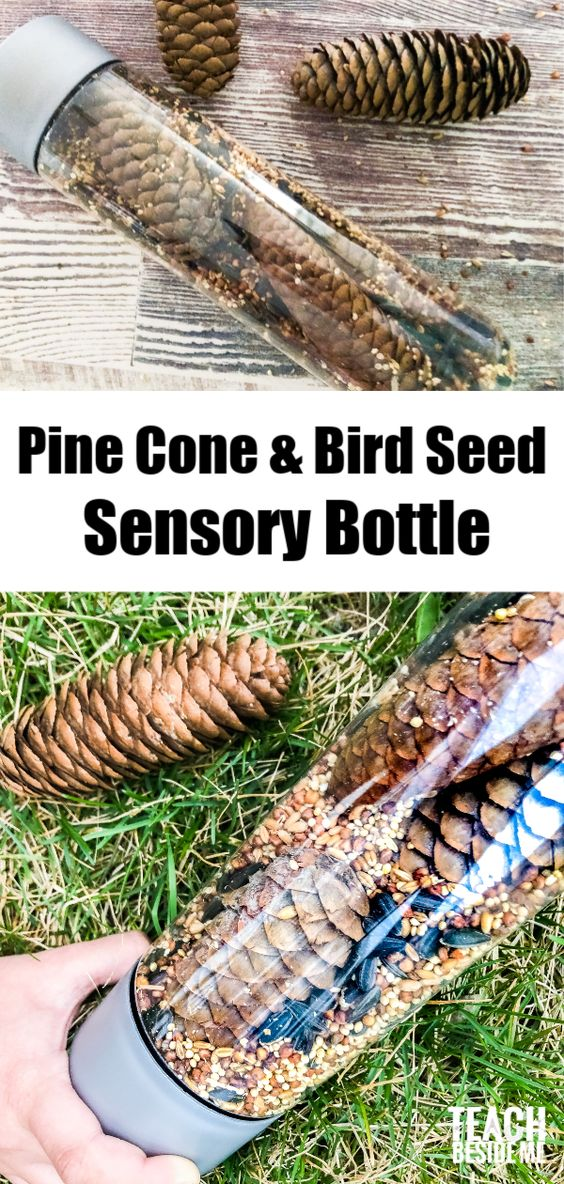 Pine cone and bird seed sensory bottle~ an awesome nature science and sensory play activity for young kids!