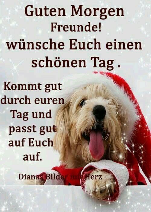 Pin Von Deko Maus Auf Weihnachtsbilder Guten Morgen Bilder
