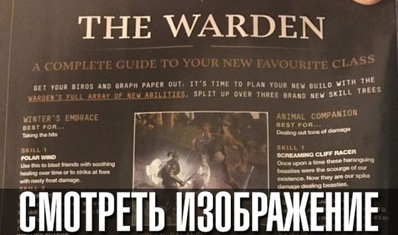 The Elder Scrolls Online - ?????????? ? ???????? ?????? Warden | GoHa.Ru