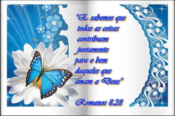 """""""E sabemos que todas as coisas contribuem juntamente para o bem daqueles que amam a Deus"""" Romanos 8:28"""