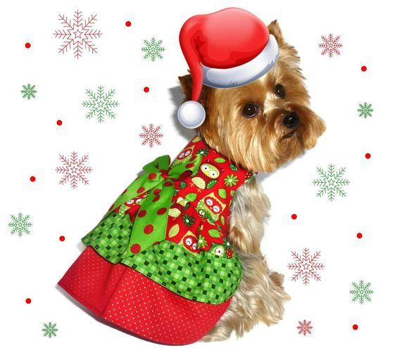 CHRISTMAS Dog Clothes SEWING PATTERN 1628 Ruffle Dog Dress for the Little Dog by SofiandFriends on Etsy https://www.etsy.com/listing/169554772/christmas-dog-clothes-sewing-pattern