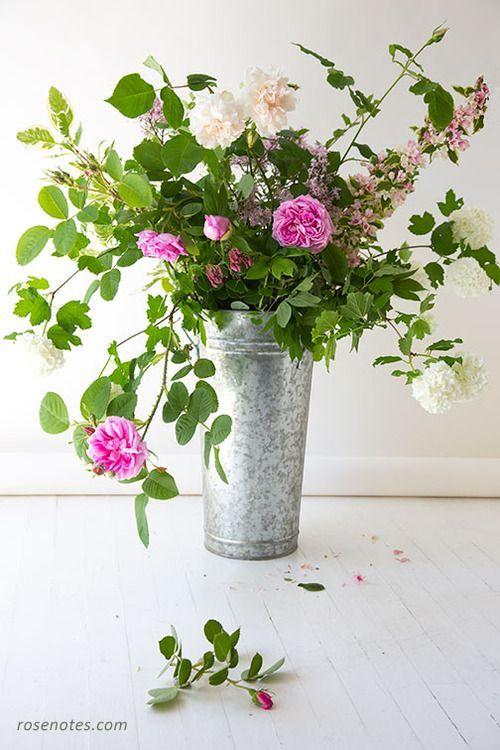 Garden rose bouquet in zinc bucket.   r o s e n o t e s