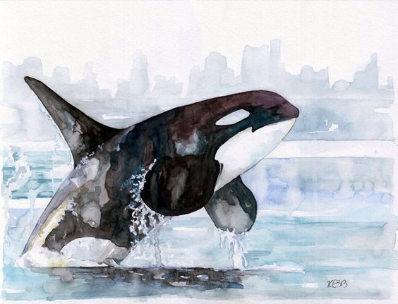 """Orca Painting - Print from Original Watercolor Painting, """"Icy Waters"""", Beach Decor, Whale Art, Orca Art, Whale Print door TheColorfulCatStudio op Etsy https://www.etsy.com/nl/listing/176754141/orca-painting-print-from-original"""