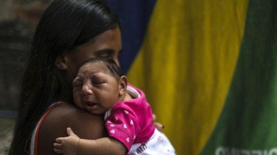 Zika-Blog: Erster Mensch stirbt in Honduras an Folgen einer Zika-Infektion - Augsburger Allgemeine