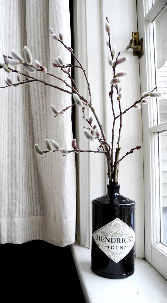 pussy willow twigs in a black gin bottle