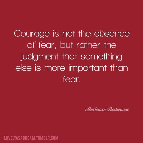 Courage is not the absence of fear, but rather the judgement that something else is more important than fear - Ambrose Redmoon