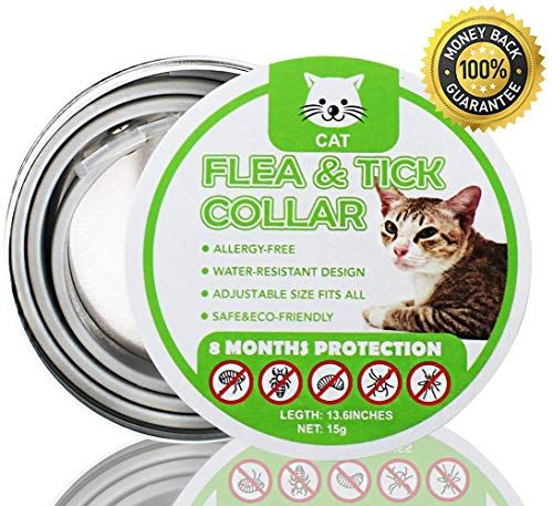 Flea And Tick Collar For Cats And Kittens Anti Parasite Collar Pests Repellent For Pet Added With Natural Oils Adjustable Size Waterproof Stops Bites