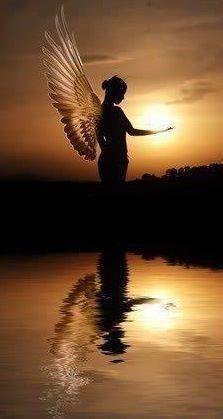 Angel Reflection!