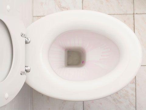 Clean Toilet Bowl Clean Toilets And Toilet Bowl On Pinterest