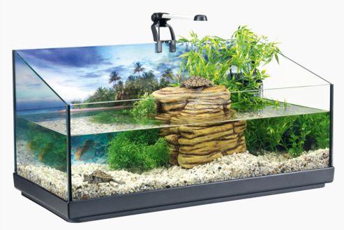 mantenimiento del acuaterrario para tortugas