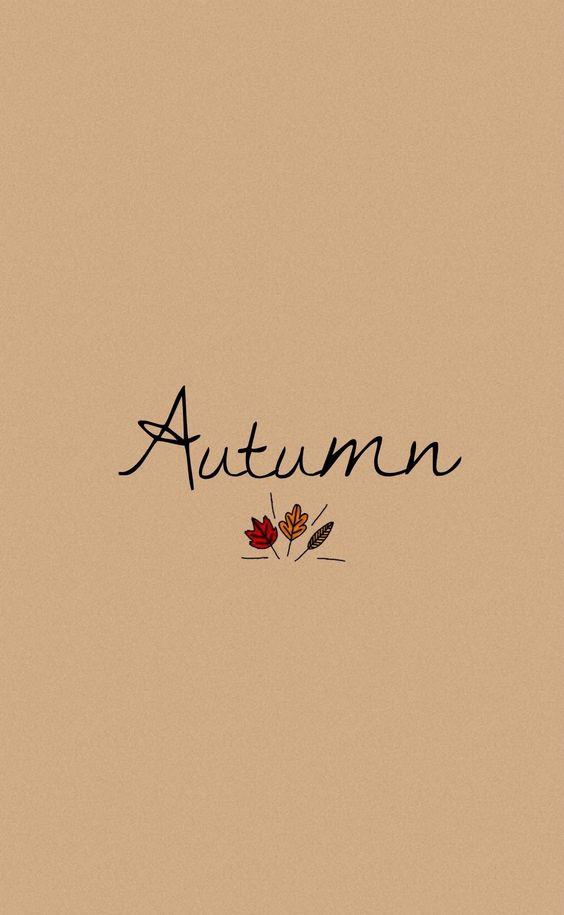Autumn phone wallpaper
