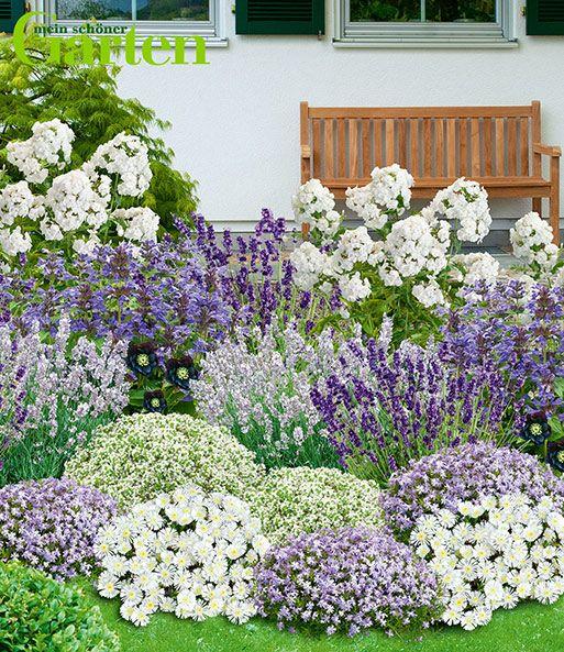 Mein Schoner Garten Bienenfreundlic Staudenbeete Bei Baldur Garten Staudenbeet Staudengarten Mehrjahrige Pflanzen