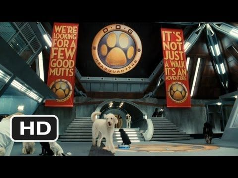 Cats Dogs The Revenge Of Kitty Galore 2 Movie Clip Welcome To Dog Hq 2010 Hd Youtube