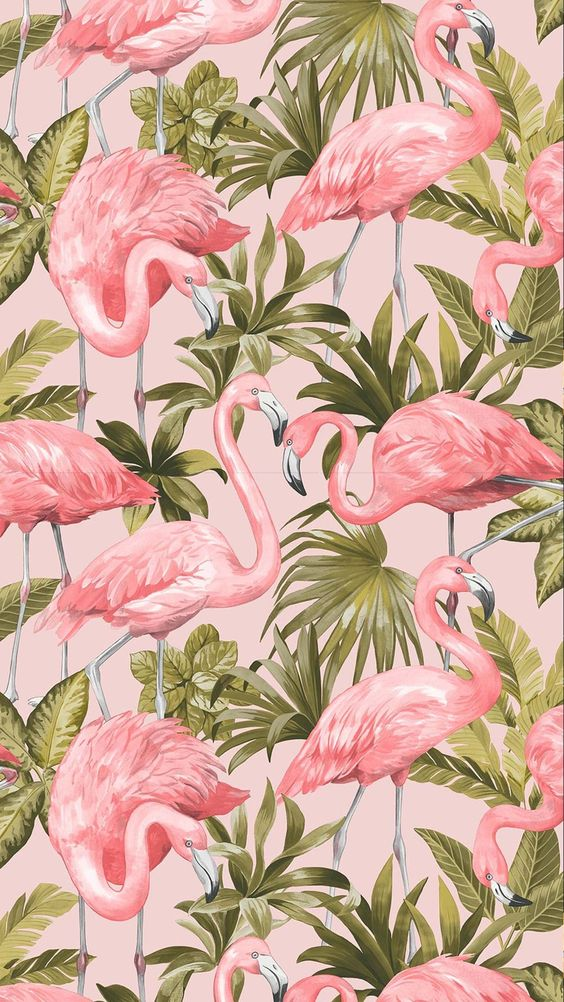 A recent addition to I Love Wallpaper's collection, this funky paper features some beautifully detailed artwork in the foreground including pink flamingos nestling amongst wonderfully coloured palm leaves, set upon a solid coloured background which really does help to highlight the birds in the design.  Its fun and fresh look help create a welcoming atmosphere to any living area in your home.  For similar Designs visit ilovewallpaper.co.uk #ilovewallpaper #home #interior #decor