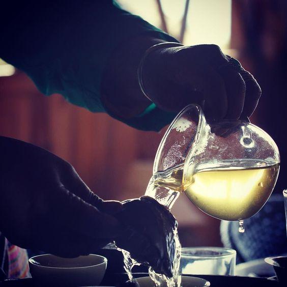 #PuEr in #JingMaiShan   #teahunting #o5tea #茶 #чай #oldtree