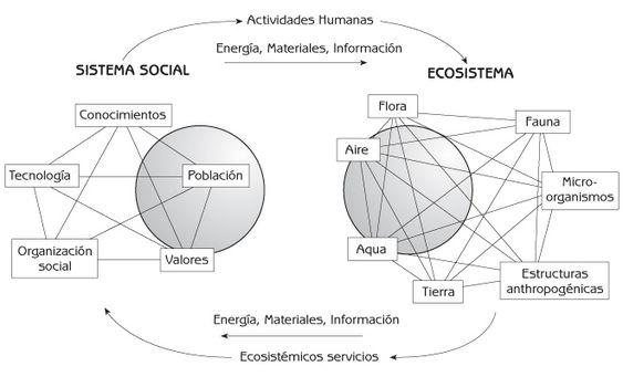 Figura 1.1 Interacción del sistema social humano y el ecosistema.