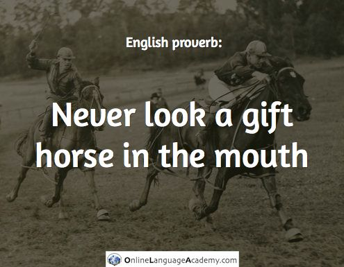Never look a gift horse in the mouth / English proverb: | English ...