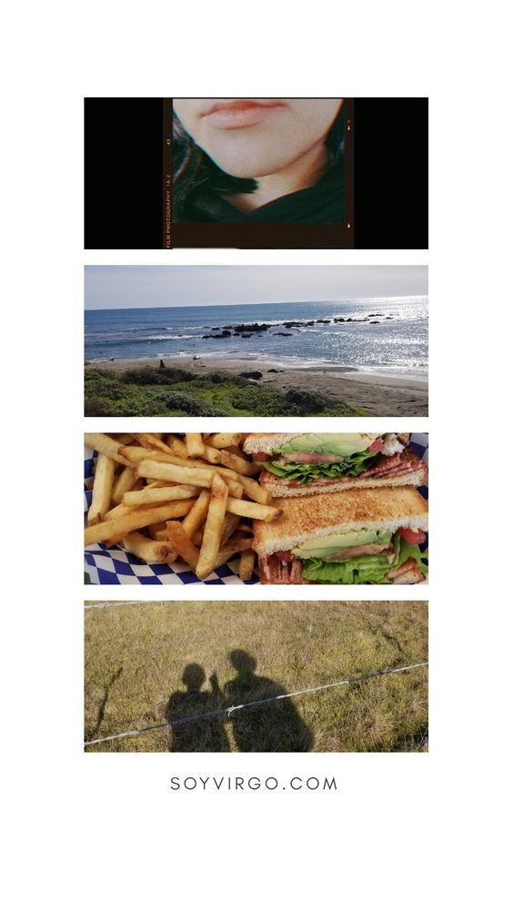 SOYVIRGO.COM FEBRUARY MEMORIES 2019 VEGAN FOOD AND TRAVELS