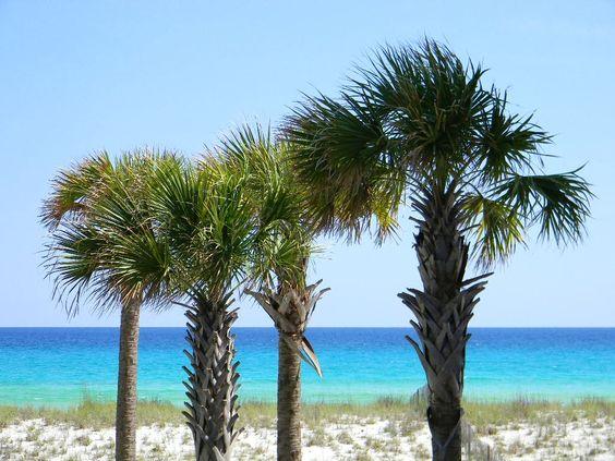 View of Navarre Beach from Summerwind Resort
