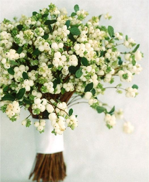 winter wedding flowers: snowberries! beautiful! I would also like some pink flowers with it, they can be little, that's okay:
