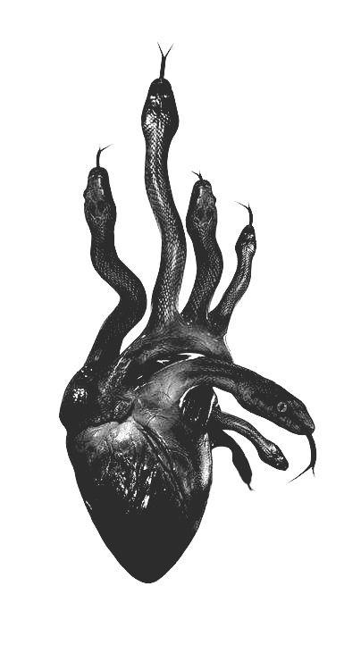 ÐаÑÑинка Ñ Ñегом Â«snake, heart, and black»