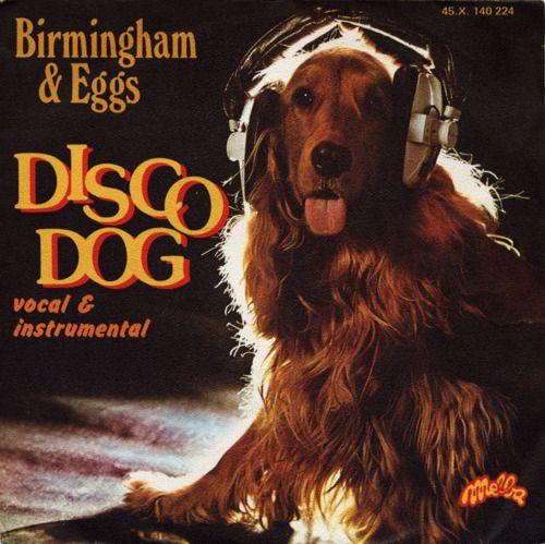 Guilty Pleasure  - - - -Disco Dog (1977)
