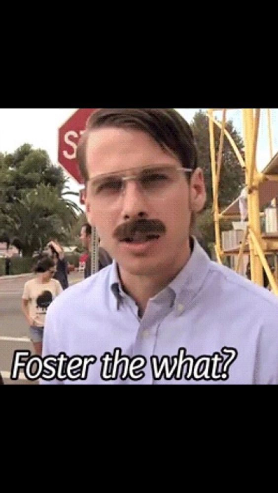 Foster the what?