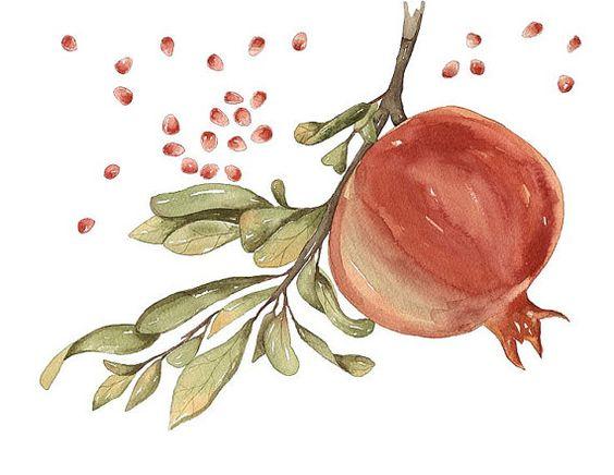 Watercolor Print Pomegranate Open edition от lorisworld на Etsy