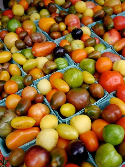 Edible Rainbows! Heirloom tomatoes at Union Square farmers market in NYC