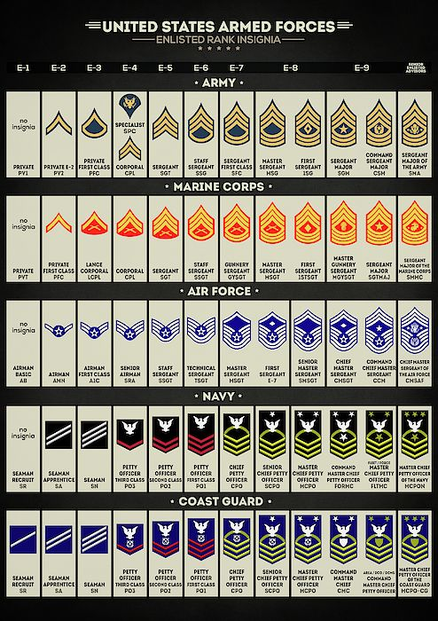 United States Armed Forces Enlisted Rank Insignia Us Army Marine Corps Air Force Navy Coast Gu Military Ranks Military Insignia United States Armed Forces