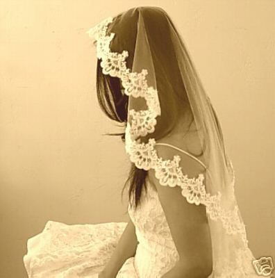 What I want my veil to look like. :)
