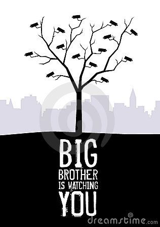 big-brother-watching-you-7657617.jpg (316×450)