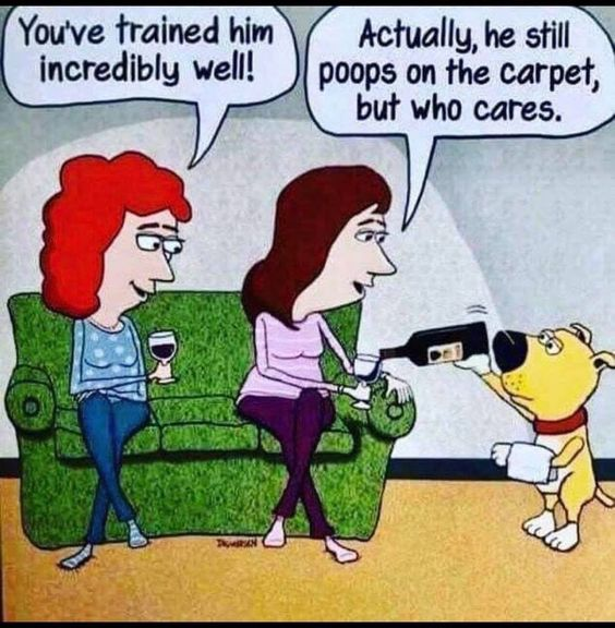 you have trained him well... Funny cartoons