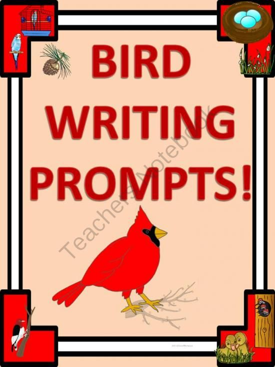 birdsong essay help Ms f birdsong caption 7th grade english and pre-ap caption l mccowan  middle school schedule: warning @ 7:55 pre-ap 1st/5th period 8:00-9:30 am.