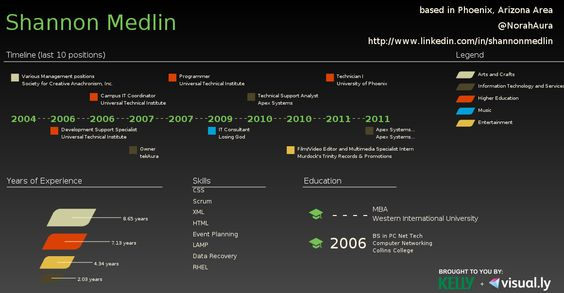 Dark simple infographic by Kelly from visual.ly