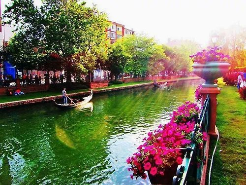 #travel #turkey #photography #flowers