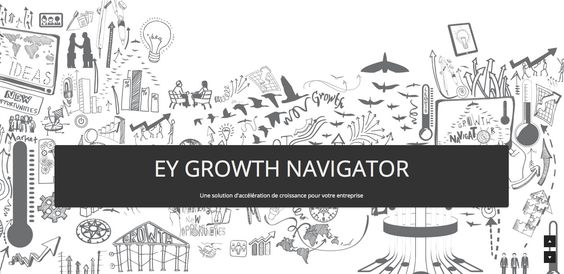 Sales pitch for EY Growth Navigator