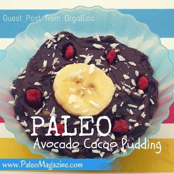 Paleo Cacao Avocado Pudding Recipe – Guest Post from Orgali.ca http://paleomagazine.com/paleo-cacao-avocado-pudding-guest-post #paleo #gf #glutenfree #recipe #diet