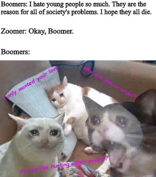 Pin By Luna Walker On My Humor Memes Funny Dark Sense Of Humor