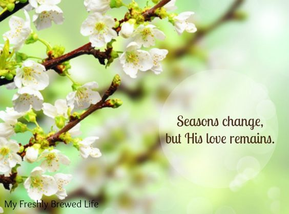 The Weekend Brew: Seasons Change, But His Love Remains - My Freshly Brewed Life #LetGodLoveYou <3 #AConfidentHeart