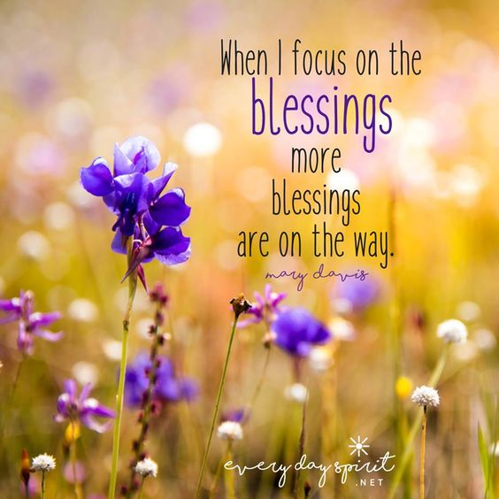 Today, keep your eyes on the blessings. Find them, great and small, everywhere you turn. You will be amazed by how they will multiply throughout the day. Focus on the blessings and more blessings are on the way. 💜 There are countless blessings, reflections, meditations and practices in Every Day Spirit: A Daybook of Wisdom, Joy and Peace. Join the daily journey of living a calmer, more loving life. xo #blessings #LawOfAttraction #InspirationalQuotes