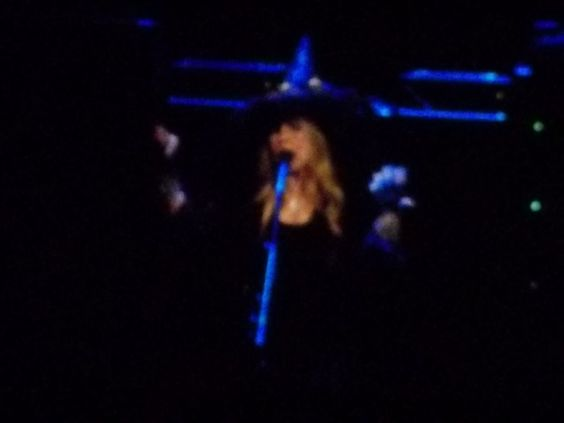 I'm so glad I got to see Stevie in concert! 10-31-14 in DC!   What better way for my daughter & I to spend Halloween?