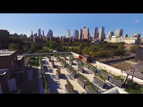Rooftop Reds Rooftop Vineyard Rooftop Winery Wedding Venue And Wine Bar Nyc Trip Rooftop San Francisco Skyline